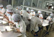 Bên trong quy trình sản xuất yến sào Hồng Tuyết Linh