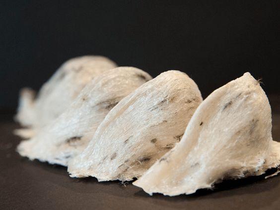 Yến sào rút lông khô - Quà tặng sức khỏe cho mọi nhà